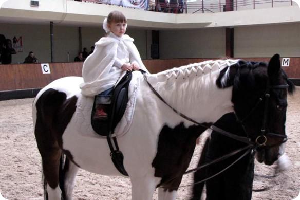 Обзор конных клубов Киева: 21 место, где покататься на лошадях
