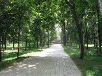 Парки Киева.  The Village.  В пяти городских парках установят камеры видеонаблюдения.