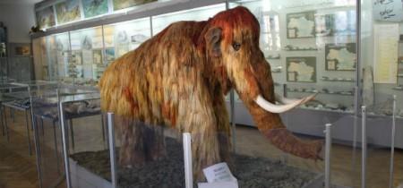 Научно-природоведческий музей
